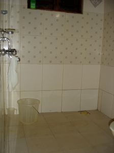Toilet, shower, bucket, faucet all together