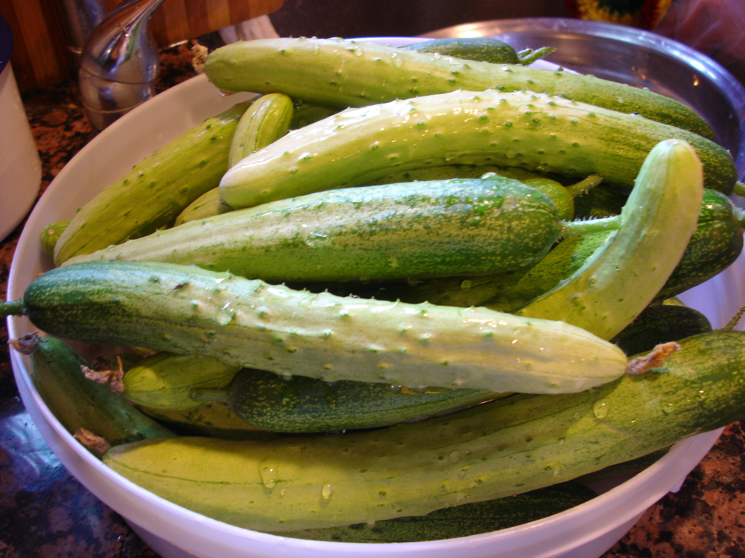 recipe: korean cucumber plant [6]